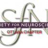 Art, science, and hockey: Carleton university's brain awareness week